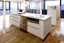 System Kitchen (Island Type)